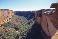Kings Canyon guided camping adventure tour in Watarrka National Park